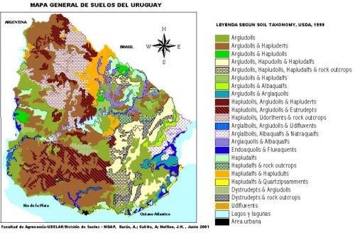 Tipos de mapas