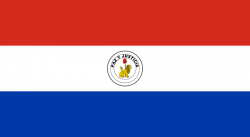 Bandera de Paraguay reverso