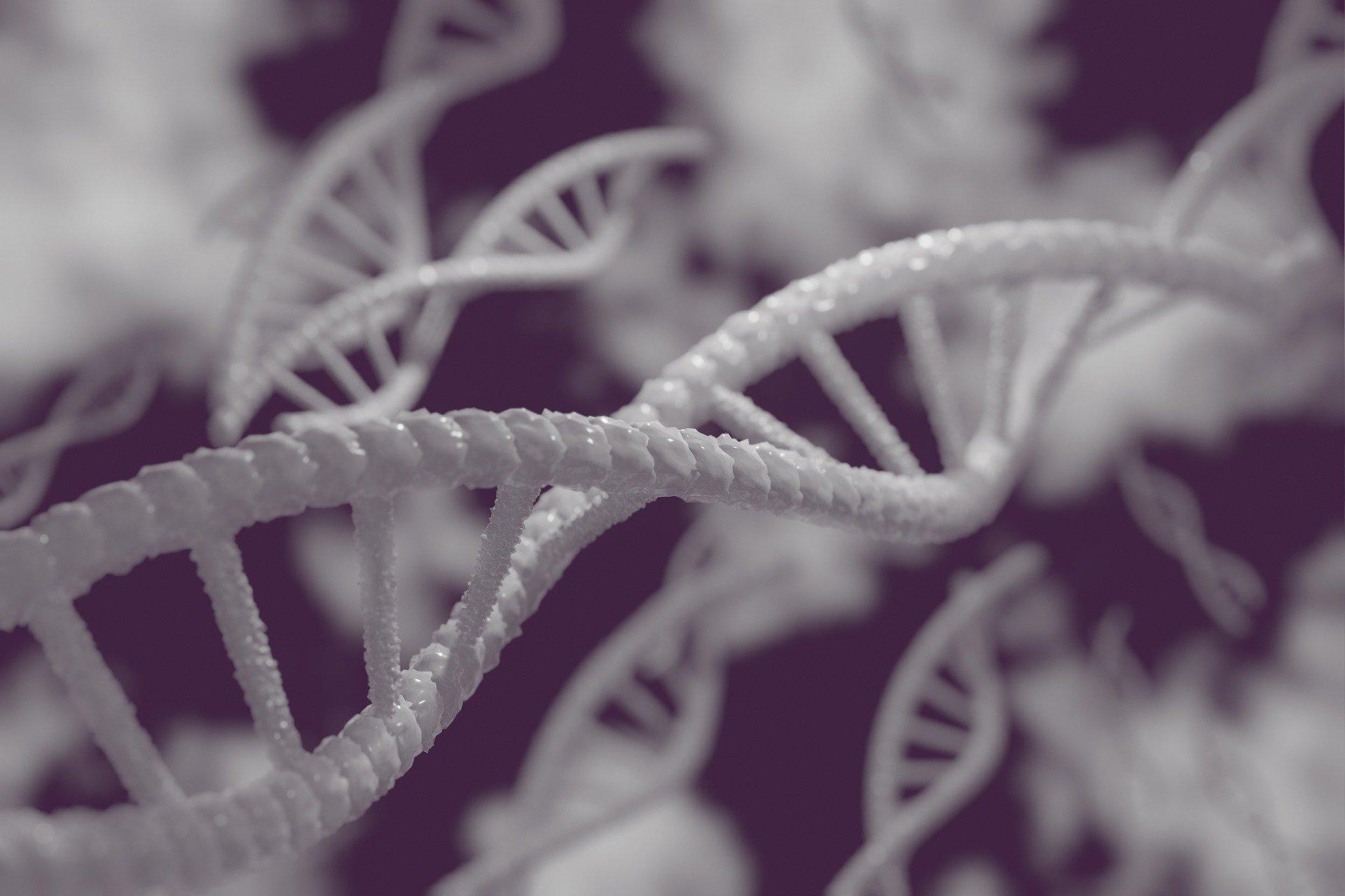Biología molecular (ADN)