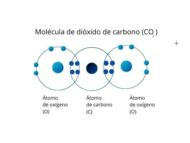 Enlace covalente doble