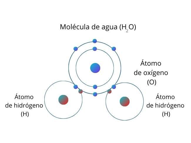 Enlace covalente, molécula de agua