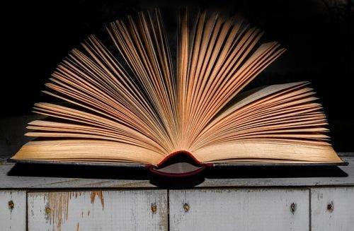 Páginas del libro