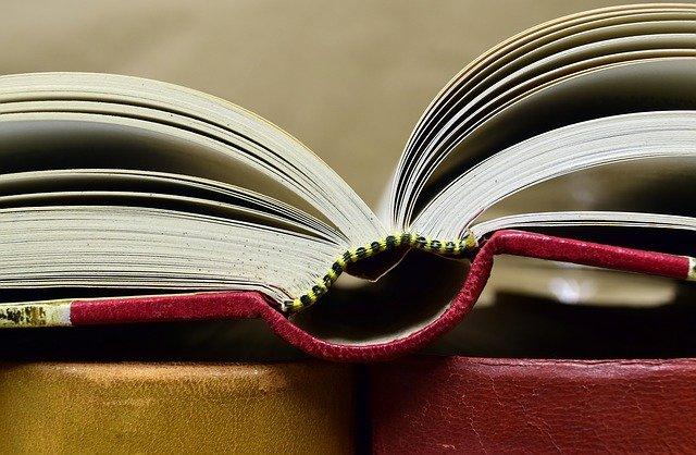 Partes de un libro - Significados
