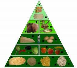 pirámide alimenticia
