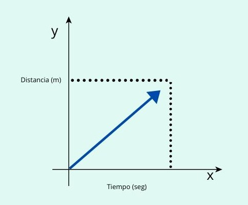 Posición, vector de posición