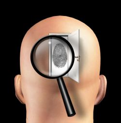Significado De Psicología Forense Qué Es Concepto Y Definición