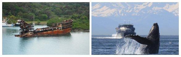 Impacto del transporte marítimo